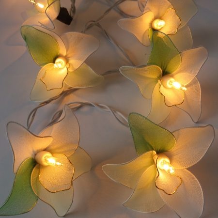 fairy-lights-orchid-green-rds