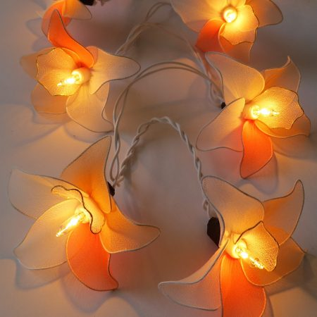 fairy-lights-orchid-orange-rds