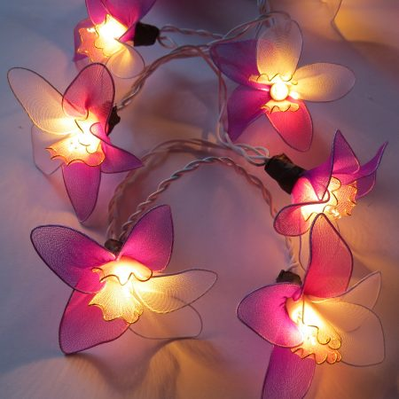 fairy-lights-orchid-purple-rds