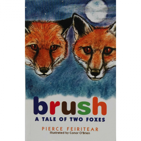Book cover for Brush, A Tale of Two Foxes