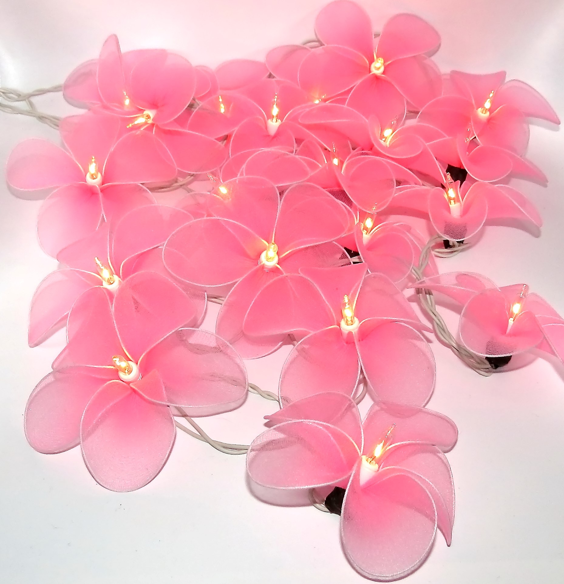 Frangipani Flower Fairy Lights Estreet